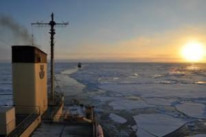 arktika foto